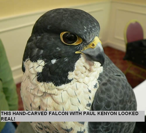 THIS HAND-CARVED FALCON WITH PAUL KENYON LOOKED REAL!